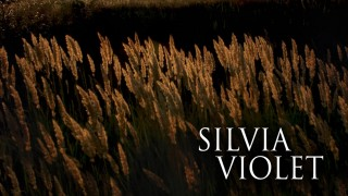 Cover Reveal: If Wishes Were Horses by Silvia Violet