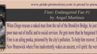 Blog Tour : Interview , Excerpt & Giveaway Angel Martinez - Finn