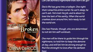 Book Blast : Excerpt & Giveaway , Diana DeRicci - Not Quite Broken
