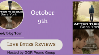 Blog Tour : Guestpost, Excerpt & Giveaway Sara York - After the End