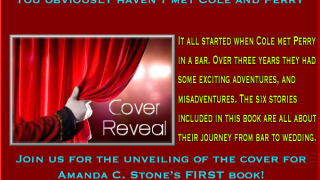 Cover Reveal, Excerpt & Giveaway Amanda C. Stone - The Adventures of Cole and Perry