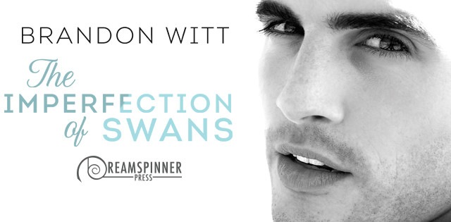 Guestpost incl Exclusive Reading & Giveaway Brandon Witt - The Imperfections of Swans