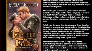 Blog Tour: Interview, Excerpt & Giveaway  Evelyn Elliott -- Feather Fall