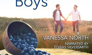 Audio Book Review: Blueberry Boys by Vanessa North (Author) & Tobias Silversmith (Narrator)