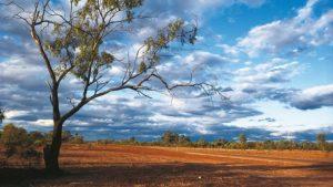 734654-130309-t-australian-scenery