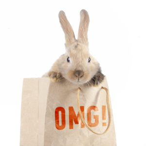 Little rabbit in a paper bag with the inscription: OMG!