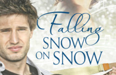 falling-snow-on-snow-cover-400x600