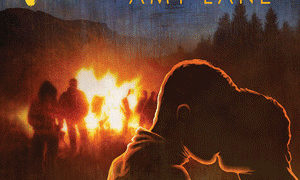 Release Day Duo Review: Bonfires by Amy Lane