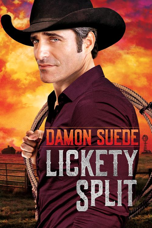LicketySplit-DamonSuede-500px