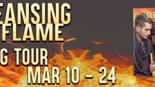 Blog Tour: Guestpost, Excerpt & Giveaway Andrew Grey - Cleansing Flame