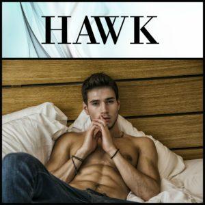 BiTW 8c - Hawk