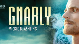 Blog Tour: Intro, Exclusive Excerpt & Giveaway  Mickie B Asling - Gnarly