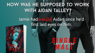 Guestpost & Giveaway: Layla Reyne - Single Malt (Agent Irish and Whiskey)