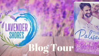 Blog Tour: Exclusive Excerpt & Giveaway  Rosalind Abel - The Palisade