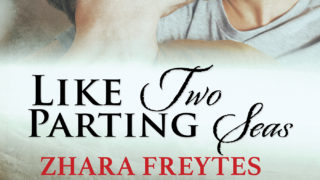 Spotlight incl Exclusive Excerpt: Like Two Parting Seas (States of Love) by Zhara Freytes