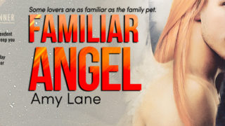 Guestpost incl Exclusive Excerpt: Amy Lane - Familiar Angel