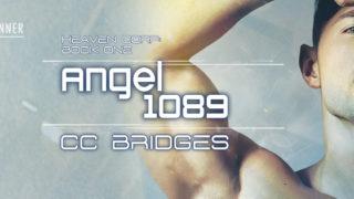 Blog Tour: Intro, Exclusive Excerpt & Giveaway -- CC Bridges - Angel 1089