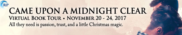 Blog Tour: Exclusive Excerpt & Giveaway -- Katie Porter - Came Upon a Midnight Clear