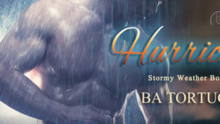 Spotlight incl Guestpost: B.A Tortuga - Hurricane (Stormy Weather #3)