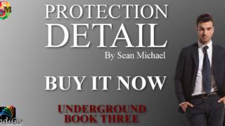 Guestpost & Excerpt: Sean Michael - Protection Detail (Underground #3)