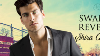 Blog Tour: Guestpost, Excerpt & Giveaway -- Shira Anthony - Swann's Revenge