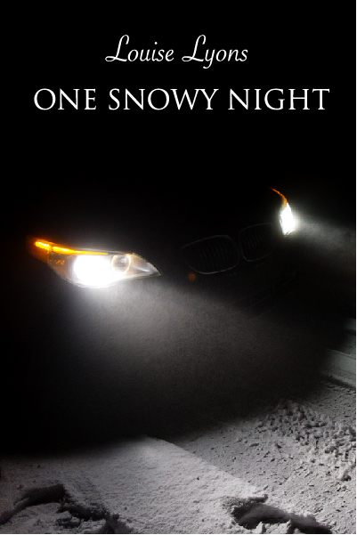 louiseOne Snowy Night Book Cover 400 x 600